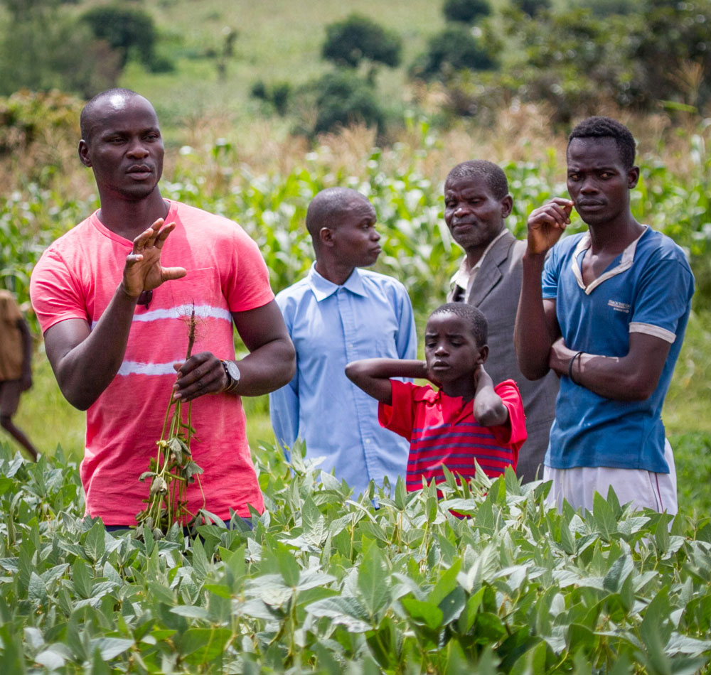 Extension Services: FSU Regional Manager Kumbu Munthali conducts a farmer training in the field